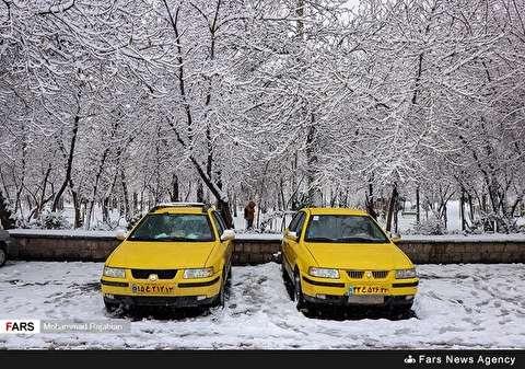 بالصورة: هطول الثلوج في مدينة مشهد المقدسة