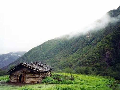 عکس طبیعت زیبای شمال
