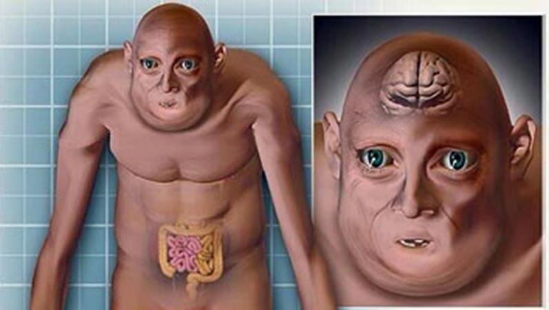 تغییر شکل انسانها تا سال 3000 میلادی