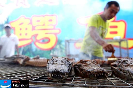 کباب تمساح در چین!