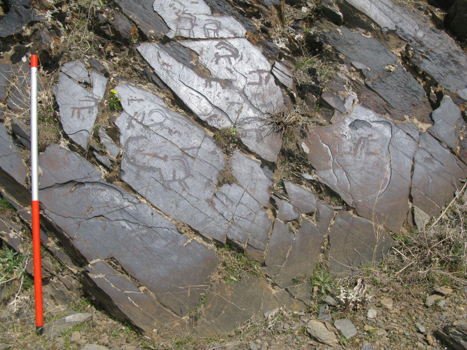 یکی از بزرگترین سنگ نگاره های ایران شناسایی شد