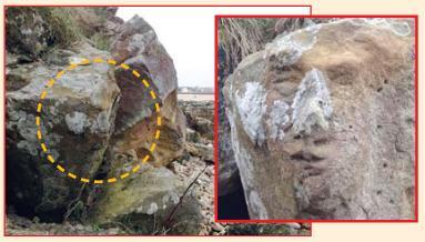 نقش فسیل انسان روی صخره ساحلی