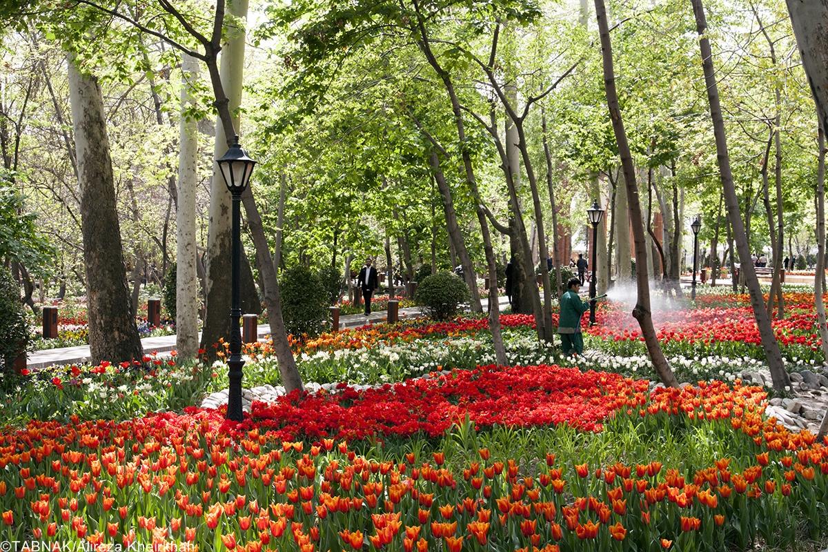 نتیجه تصویری برای بوستان