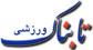 یوزپلنگ تقلبی، با ۱۲ دلار روی پیراهن تیم ملی ایران نشست