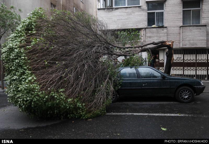 خوششانسترین صاحب خودرو در توفان تهران