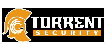 تورنت (Torrent) چیست؟ آیا قانونی و امن است؟