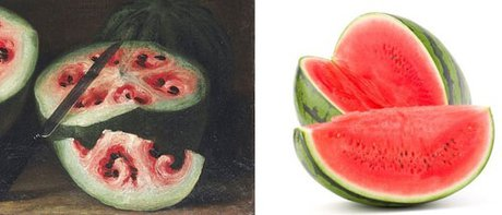 هندوانه و موز قبلا این شکلی بودند!