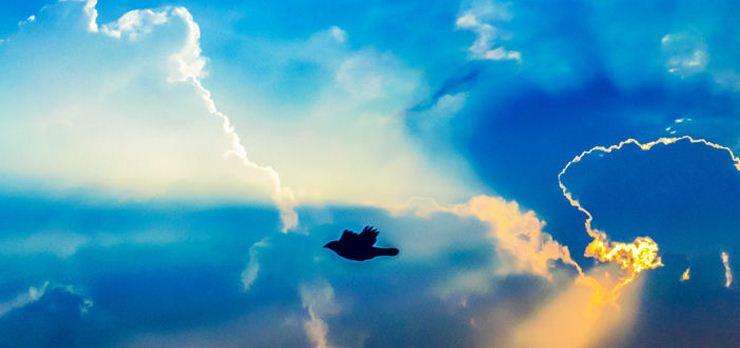 پژوهشگران رازی جدید از رنگ آبی را برملا کردند