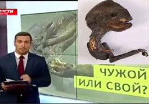 کشف موجودی عجیب در کنار نیروگاه اتمی روسیه