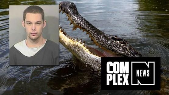 جوانی که از پلیس فرار کرد، گیر تمساح افتاد!