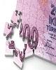 از «مشکلات ناتمام لیر در ۲۰۱۷» تا «کاهش ارزش دلار و بال...