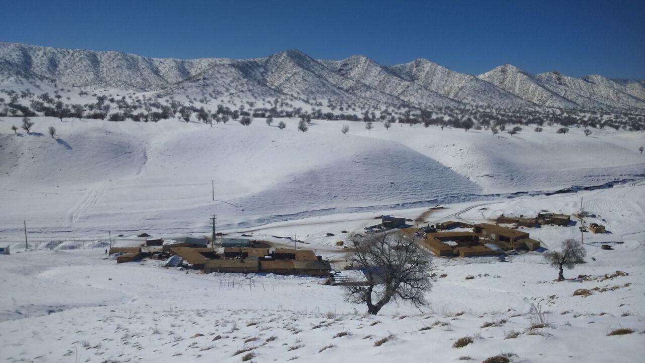 روستای ناوه چنگیزی از توابع کوهدشت لرستان