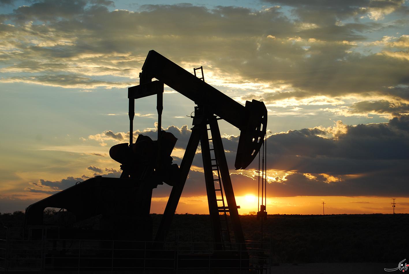 مصر ۱۲ میلیون بشکه نفت از عراق وارد می کند