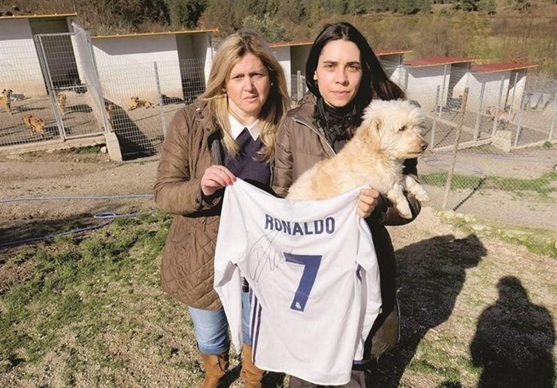 اقدام خیرخواهانه رونالدو برای نجات سگها+عکس