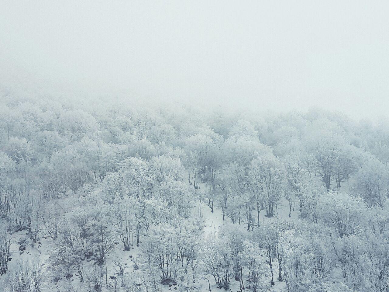 نمای زمستانه جاده چالوس
