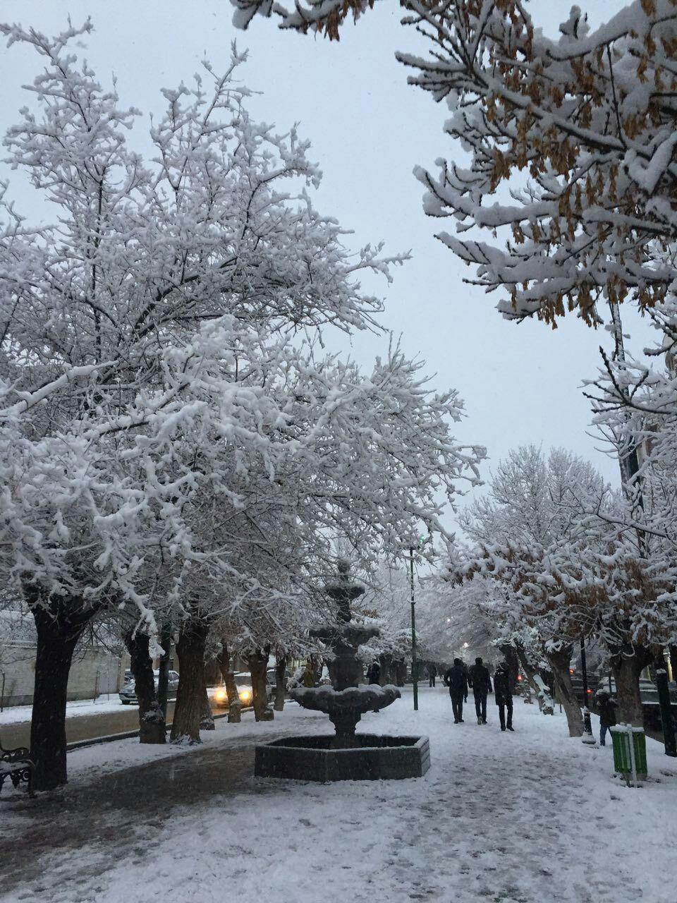 بارش برف در ملایر
