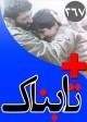 ویدیوهای دیدنی از بیعت تا لحظه به لحظه عملیات کشتن رهبر طالبان / ویدیوهای دیدنی از حواشی درخشش شهاب حسینی و اصغر فرهادی در کن / ویدیوی حمله مجتبی کبیری به چاوشی