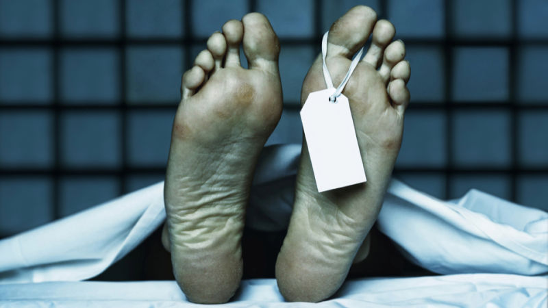 کشف جدید دانشمندان نعاریف ما از مرگ را تغییر میدهد