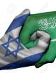 دلایل نزدیکی تدریجی کشورهای عربی به اسرائیل / ازدواج دوشیزه و مرد متأهل