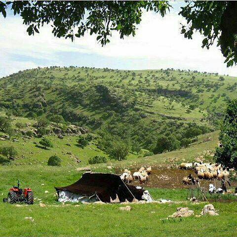 شهرستان ابدانان در استان ایلام