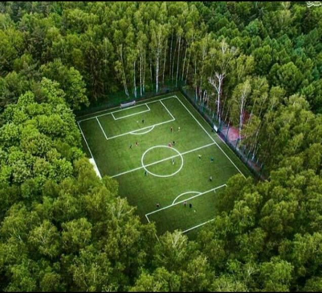 زمین فوتبال رویایی در قلب جنگلهای مسکو