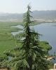 خطر خود ساخته بیخ گوش بزرگترین دریاچه آب شیرین در غرب کشور