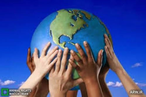 گام های مثبتی که مجلس برای حفظ محیط زیست برداشت
