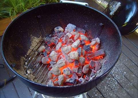 جزئیات تازه برای گریل کردن با زغال