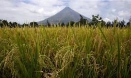 تخلیه چندین روستا در فیلیپین بدلیل فعالیت آتشفشان