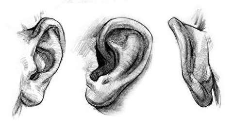 تکنیک های طراحی گوشها