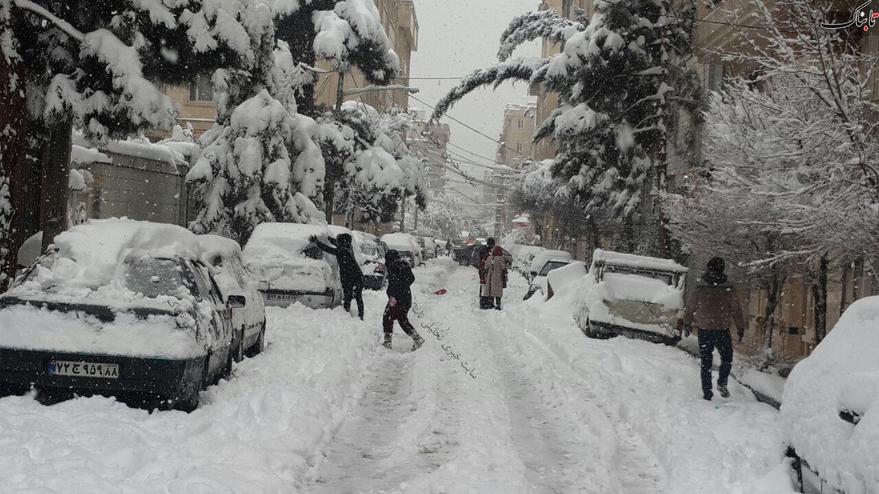 شوق برف بازی در یک روز زمستانی