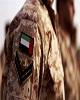 ادامه اقدامات توسعه طلبانه امارات در منطقه با ایجاد...