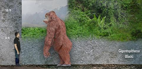 بزرگترین میمون تاریخ