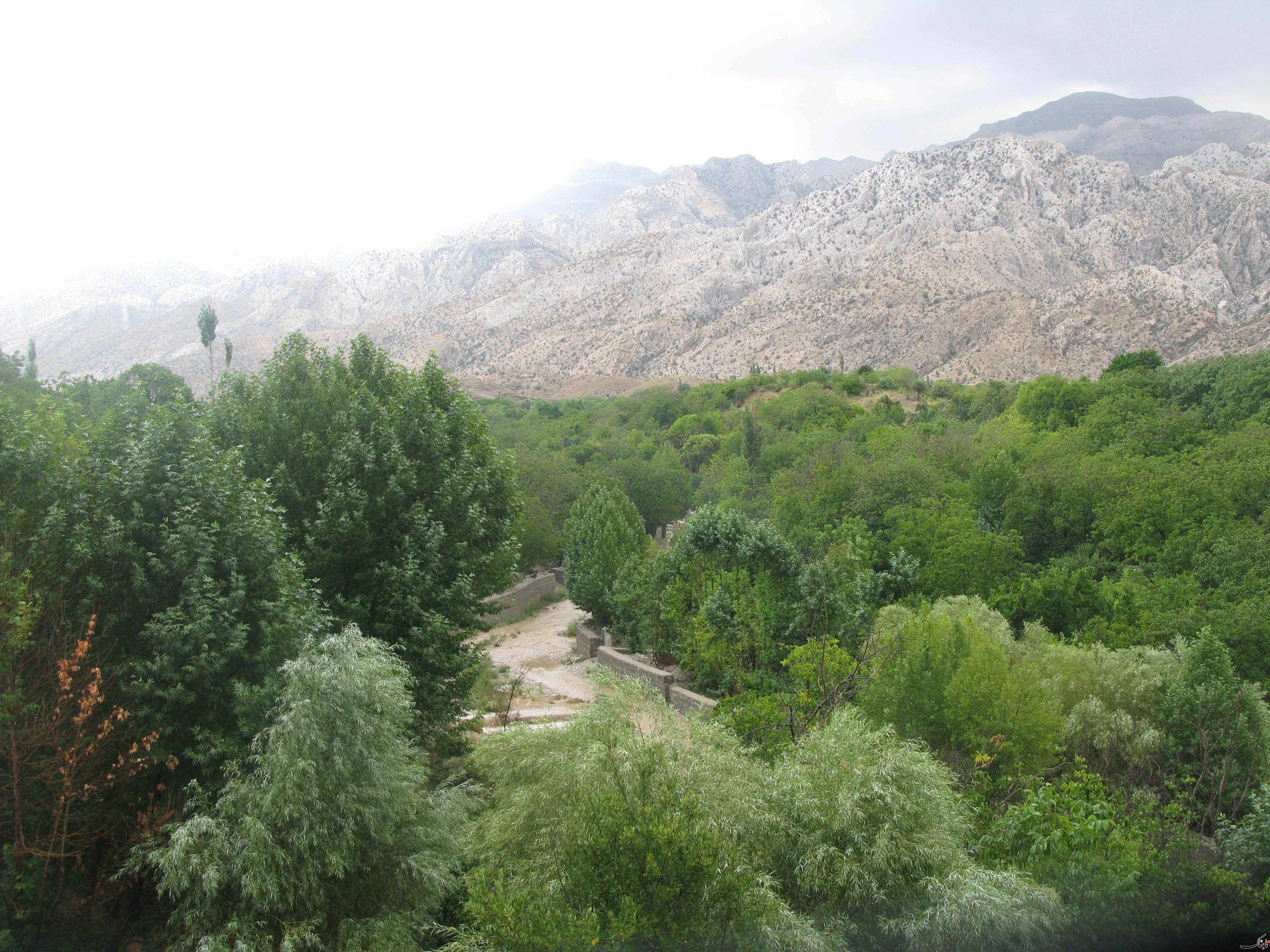 بخش خَبر (پارک کلی خبر) از توابع شهرستان بافت