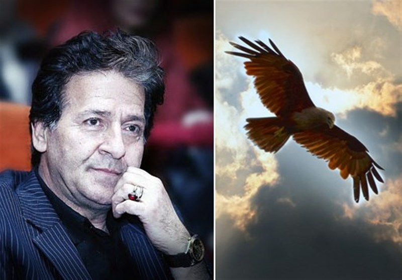 انتقاد ابوالفضل پورعرب از شکار و قاچاق پرندگان