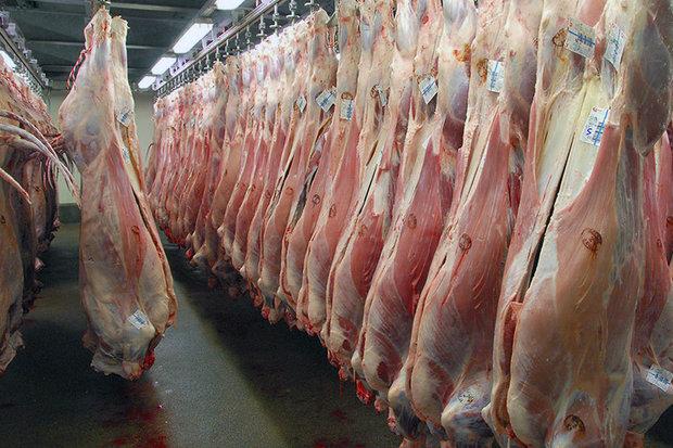 قیمت گوشت گوساله در ماه رمضان تغییر نمی کند