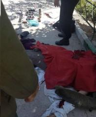 واکنشها به حوادث تروریستی تهران: عذابی سخت در انتظار تروریست ها خواهد بود/ واکنش ظریف به حادثه تروریستی تهران
