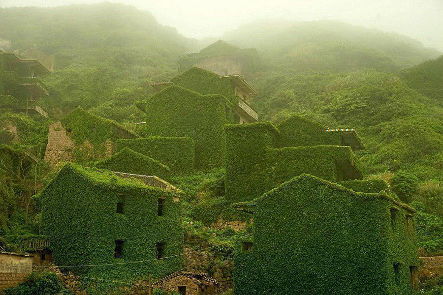 رشد خیره کننده گیاهان در یک روستای متروک