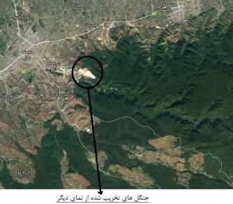 یک و نیم میلیون متر مربع جنگل،قربانی سیمان مازندران؛ پاسخ مسئولان: طبیعی است،موضوع جدیدی نیست!