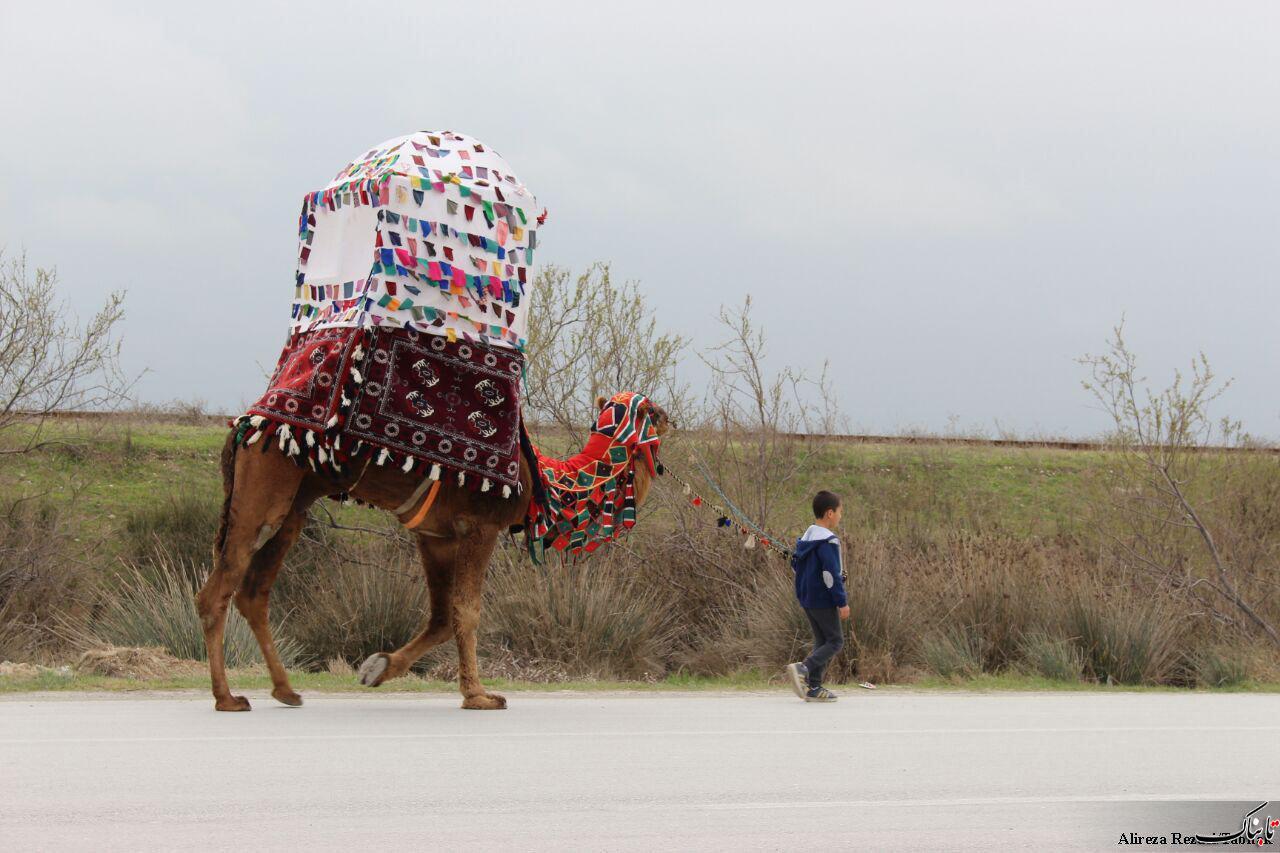 بندر ترکمن