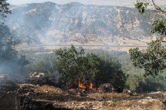 درخواست فوری مسئولان از مردم برای فرو نشاندن حریق جنگلهای کهگیلویه و بویراحمد