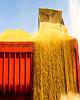 از «هجوم سرمایهگذاران برای خرید نقره» تا «راهکار واردات گندم با وجود ممنوعیت قطعی»