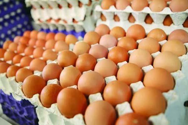 توزیع تخم مرغ ارزان قیمت در میادین