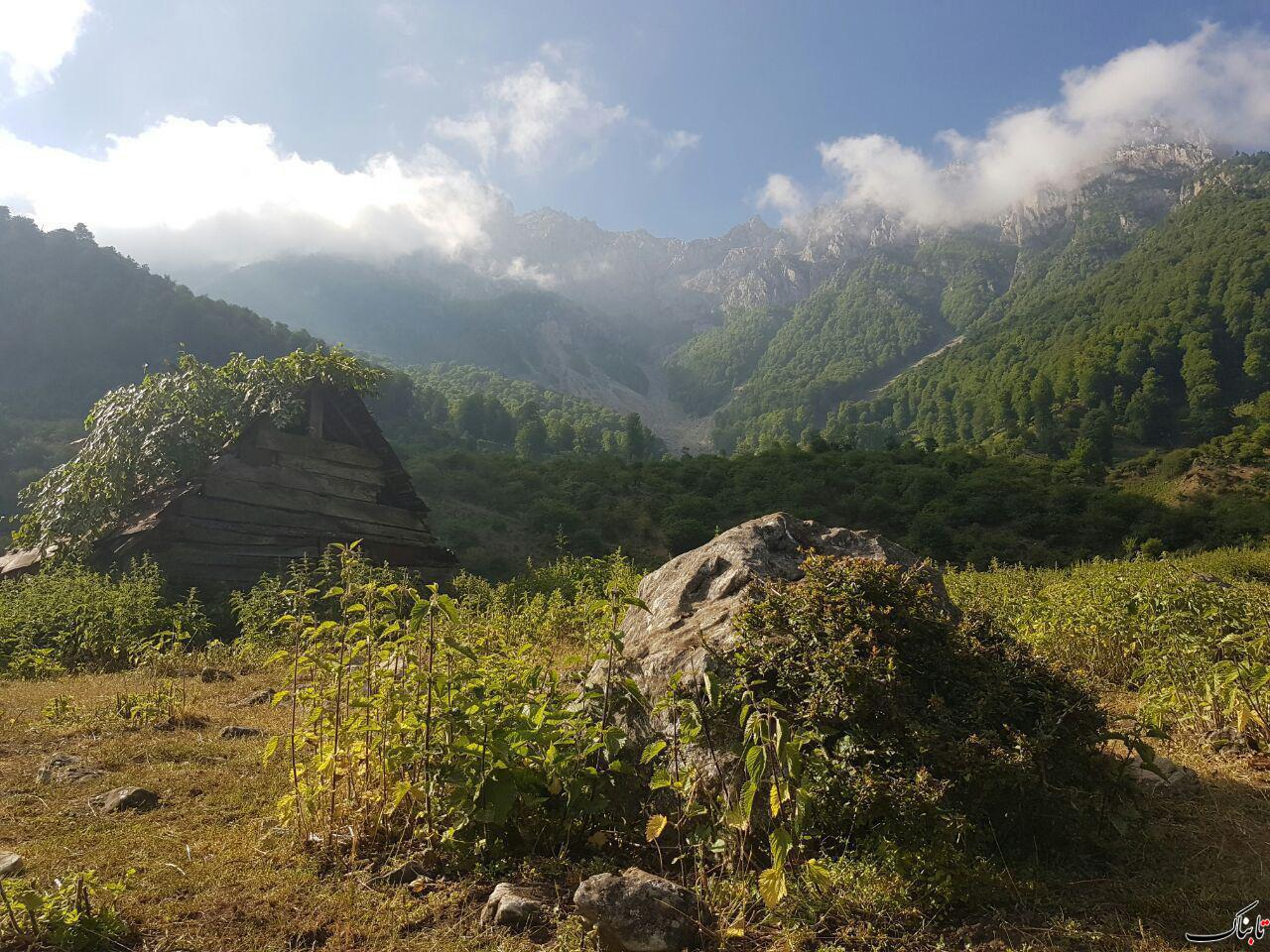 طبیعت روستای برنت - سوادکوه