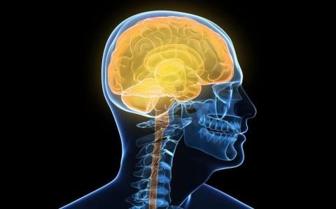چگونه داروهای عصبی روی مغز تاثیر میگذارند؟