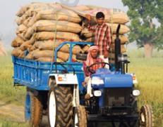 هندیها به عنوان دومین کشور تولیدکننده محصولات کشاورزی جهان به دنبال افزایش صادرات