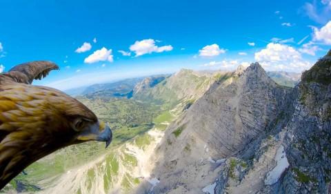 پرواز با عقاب از نمای POV