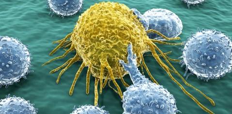 ایمونوتراپی سرطان را درمان میکند؟