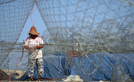 «گرگور»قفسی برای صید ماهی