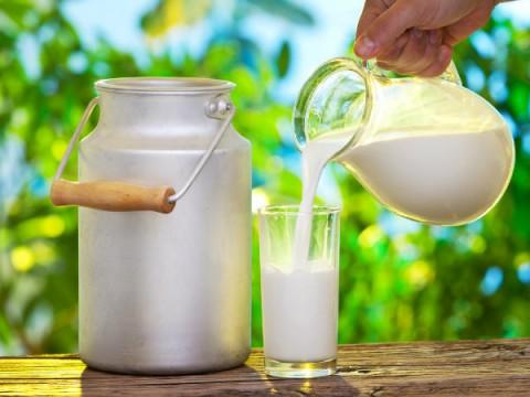 جایگزینهای شیر اندازه شیر مفیدند؟